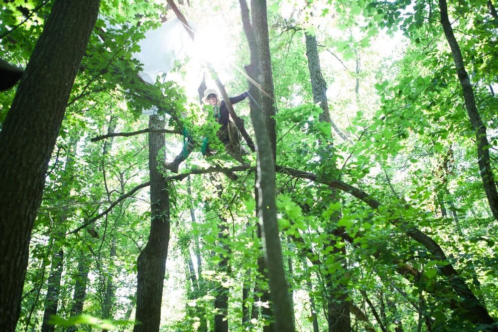 """Квест """"Выжить любой ценой"""". Урок выживания в диких джунглях."""
